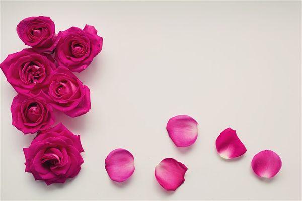 Cartas de amor para tu novia-opt